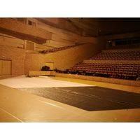 Индивидуальная специализированная укладка покрытия для японского спектакля Юдзуру 3